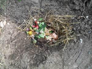 Compost 9 février