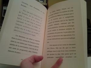 Lettres du Brésil 1